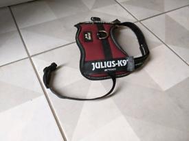 Red Julius-K9 Powerharness, Baby 2/ XXS