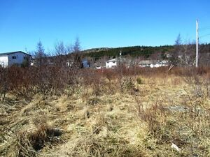 2-10 Hierlihy Place - Bay Roberts, NL - MLS# 1118980 St. John's Newfoundland image 7