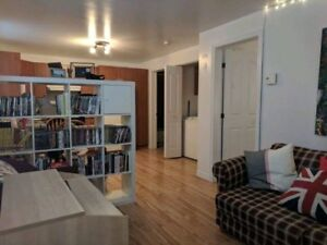 3 1/2 Apartment - For Rent (Sublet)