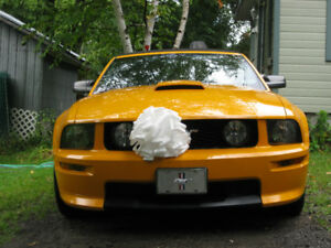 2008 Ford Mustang GT Coupé (2 portes)