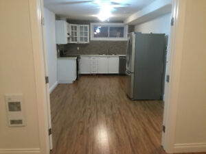 One bedroom plus den for lease to one person