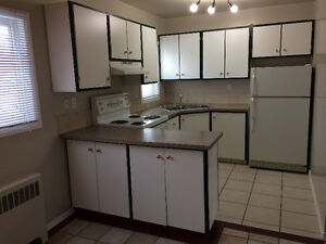 Central Location 2 bdrm Totally RENO suite in Oliver - Must see!