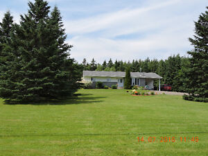 Beautifull bungalow in the country ready to move in on 1.6 acres