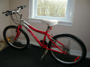 Avigo 18 Speed 24' Mountain Bike