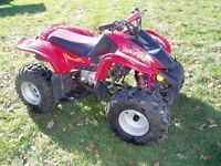 Honda DS Kids 4 wheeler Mint Condition