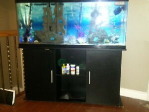 45 gallon fish tank kit and cabinet