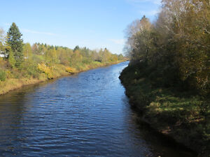 Pick from 8 beautiful Lots for sale on the Bank of Canaan River