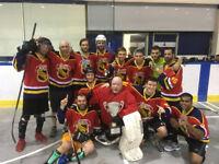 Ball Hockey Team Venom needs players Tuesday nights
