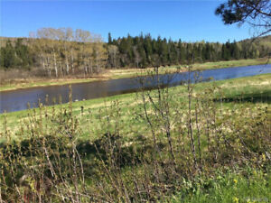 This 1.38 lot is perfect to build the home of your dreams!