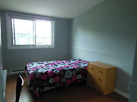 LARGE ROOM FOR RENT CLOSE TO UNIVERSITY OF WESTERN ONTARIO