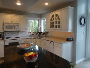 countertops in excellent condition