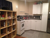Updated & Bright- 2 bedroom lower level apartment