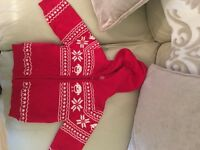 Red robin zipper for Christmas