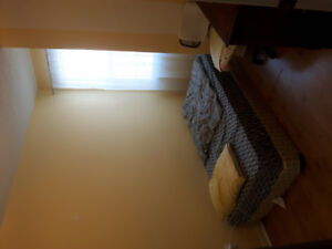 Room For Rent in Aurora