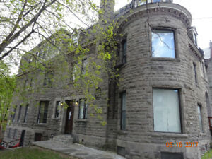Very nice apartement 21/2 very well located in the McGill GHETTO