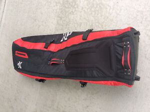 Golf clubs and golf travel bag