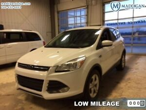 2015 Ford Escape SE  - Bluetooth -  Heated Seats - $134.83 B/W
