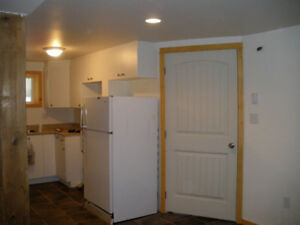 1 br and den available May 1st