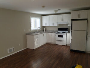 Newly renovated 1 bedroom apartment for rent
