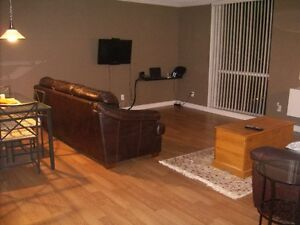Fully furnished exec one bedroom condo with indoor parking