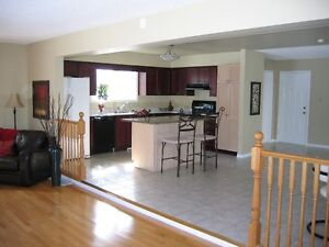 Executive, Luxury 3 Bed Rms., 4 Wash Rms., Jacuzzi, Fire Place,