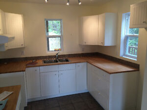 price kitchen cabinets used kitchen cabinets great deals on home renovation 1650