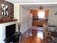 Beautifully Renovated Downtown Rental July - Sept 30