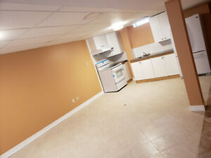 1 BR +Den BASEMENT APT FOR RENT IN CENTRAL AJAX