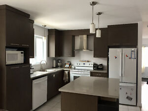 4 1/2 appartement style condo grand et neuf  st-apollinaire