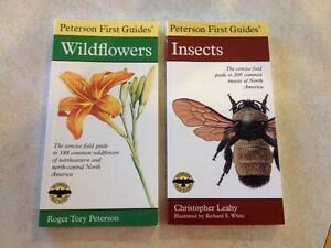 Peterson first guides - wildflowers and insects