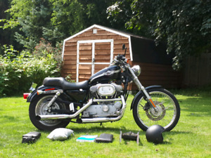 2003 Harley Sportster 883 100th Anniversary Model