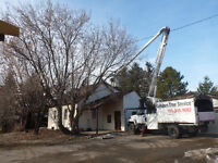 Tree Removals, Pruning, Equipment rentals