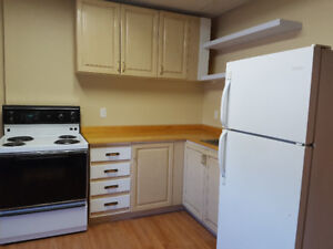 Newly Renovated 2 Bedroom Apt in Downtown Ridgetown for Rent