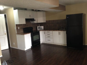 Walkout basement for rent in Panorama Hills