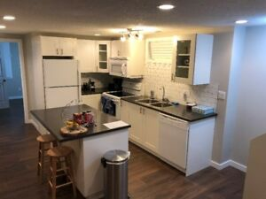 NEWLY RENOVATED! - Fort Sask 2b2b - Basement Suite