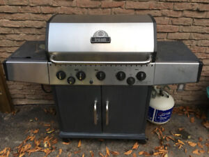 Large stainless steel natural gas bbq