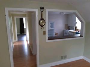 1 bedroom spacious apartment in triplex