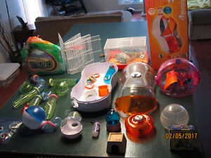 Everything you need for a hamster