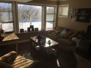 Bright above ground 1 bed bsmt suite