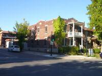 Rosemont - Parc Molson - 3 1/2 rénové, dernier étage, terrasse