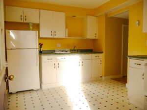 Beautiful Bright Downtown Apartment St. John's Newfoundland image 2