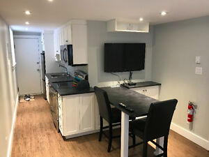 1 Bed- Fully Furnished- Aug OR Sept 1st- BY DAL,SMU, DT