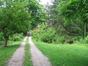 Country living in the city - inside Nature preserve - Privacy London Ontario image 2