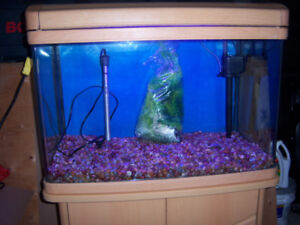 FOR SALE 45 GALLON AQUARIUM SET UP $185