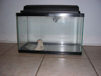"""A fish tank. for sale .  W10 x H12 x L20"""" (about 11 gallons) ."""