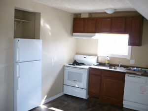 Beautiful 2bdrm close to downtown! Some pets welcome. Regina Regina Area image 2