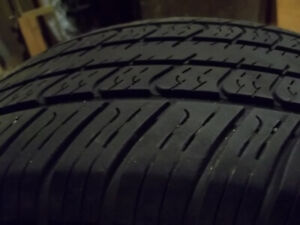4 Eldorado Legend Summer Tires 205/55R16