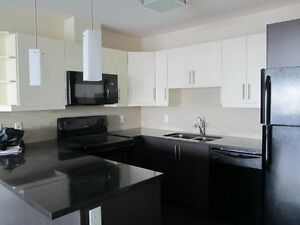 Lovely Spacious 2 bedroom Apartment at the top of Larry Uteck