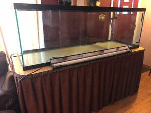 Best Christmas Gift Ever! 180gal Complete Aquarium
