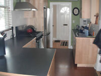 Short-term: Share nice house downtown with one other, $190/week